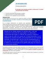 Lección 14.pdf