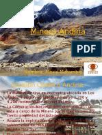 Minera Andina.pptx