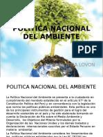 10. Politica Nacional Del Ambiente[1] (1)