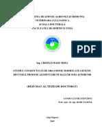 sisea.pdf