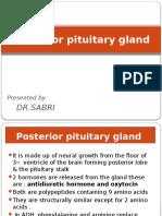 Posterior Pituitary Gland Presentation - Para