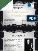 winnicott-120503162952-phpapp01.pptx
