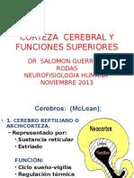 Neurofisiologia -Corteza Cerebral y Funciones Superiores