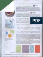 Proteinas y Mutaciones