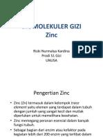 Metabolisme Zinc.pdf