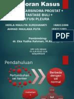 Laporan kasus Ca Prostat Ppt (2)