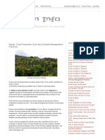 Durian Info_ Durian_ Crop Production Cycle and Orchard Management Practices