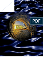 Force of Nature -- Positive Waves -- FiestaJet Gun -- MODIFIED -- PDF -- 300dpi