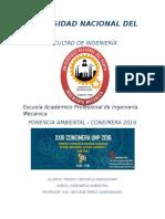 INFORME CONEIMERA.docx