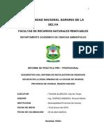 1.- DIAGNOSTICO DEL SISTEMA DE RECOLECCION DE RESIDUOS SOLIDOS EN LA ZONA URBANA DE LA CIUDAD DE HUARAZ.pdf