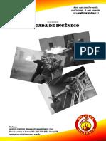 Apostila Brigada de Incêndio_Paulo Loyola