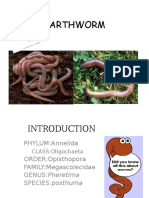 Earthworm PPT