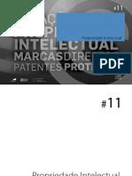 Pro Pried a de Intelectual 11