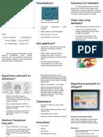 Pertussis Leaflet