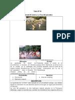 Modelo de Resumen de Jerarquizacion