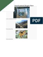 Reserva Provincial Natural Mogote Bayo