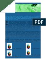 Secuencia - Gustavo Orellana