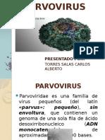 EXPOSICION PARVOVIRUS