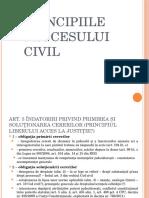 Principiile Procesului Civil