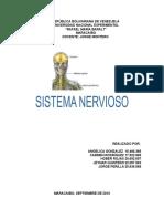 TRABAJO SISTEMA NERVIOSO.docx