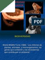 Biodiversidad Curso Ecosistemas 2016