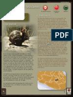 teporingo.pdf