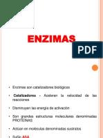 Clase 2 Enzimas