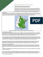 2 Consumo Agrotox Informe 2013