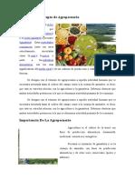 Definición y Concepto de Agropecuaria
