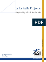 ESI Metrics for Agile Projects