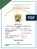Morfología de los cultivos de plátano.docx