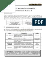 BC 12 - Reproducción Humana I.pdf