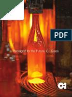 2009 Oi Annual Report