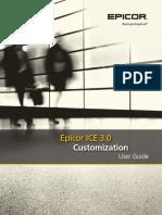 EpicorCustomization UserGuide 100600-1