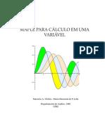 Livro Calculo_I - Maple