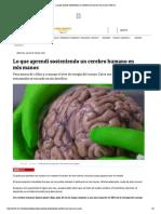 Lo Que Aprendí Sosteniendo Un Cerebro Humano en Mis Manos _ Tele 13