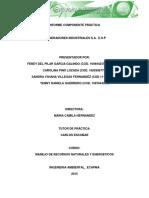 Informe Componente Practico Incineradores Industriales