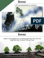 Bonsai_1.pdf