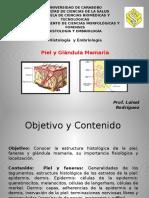 Clase Piel y Glandula Mamaria