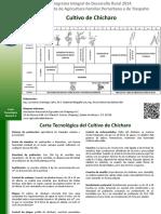 CHICHARO.pdf