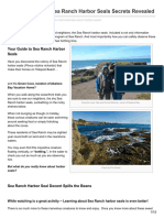 Searanchabalonebay.com-Top 10 Incredible Sea Ranch Harbor Seals Secrets Revealed (1)