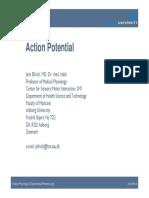 Action Potential Jens Ellrich