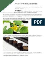 Tecnicas Hidroponicas y Cultivo Del Hongo Seta