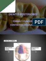 Lesiones oclusales
