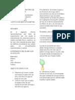 Informe de Laboratorio de Quimica