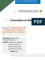 Reporte de Proyecto