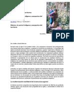 8 Mexico El Control Indigena y Campesino Del Territorio Ana de Ita