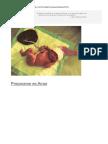 Placenta Guia Medicina