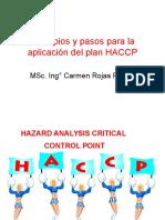 12 Pasos y 7 Principios Del HACCP (2)