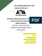 Practica 1 quimica organica.doc